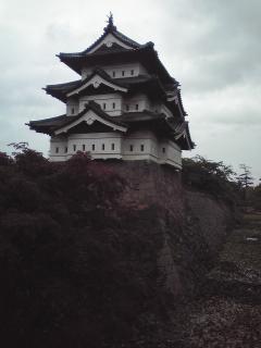 雨の弘前城
