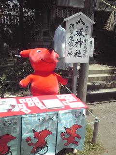 稲毛浅間神社大祭にて