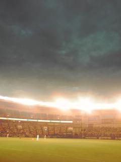 マリンスタジアム一塁側フィールドウイングシートで観戦中